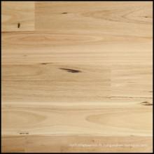 Plancher en bois massif naturel Blackbutt