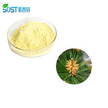 Chinese Supplier Dietary Supplement Organic Bulk Pine Pollen Powder