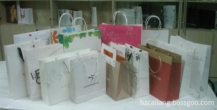 Shopping Gift Bag7