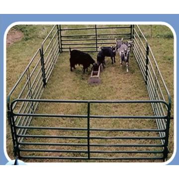 Vente en gros de clôtures pour chevaux