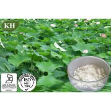 Extrait de feuille de lotus Nuciferine 2% et 10: 1