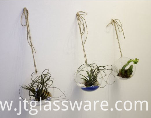 hanging glass terrariums for succulents and air plants (2)