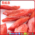 Goji berry extract what is a goji berry pianta di goji