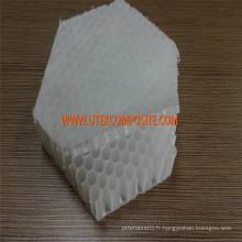 Noyau en nid d'abeilles en polypropylène de 30 mm pour FRP