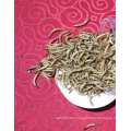 Bird Food Mealworm Dry Food For Pet