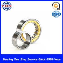 Chine Fourniture et roulement à rouleaux cylindrique de haute performance (NU 206)