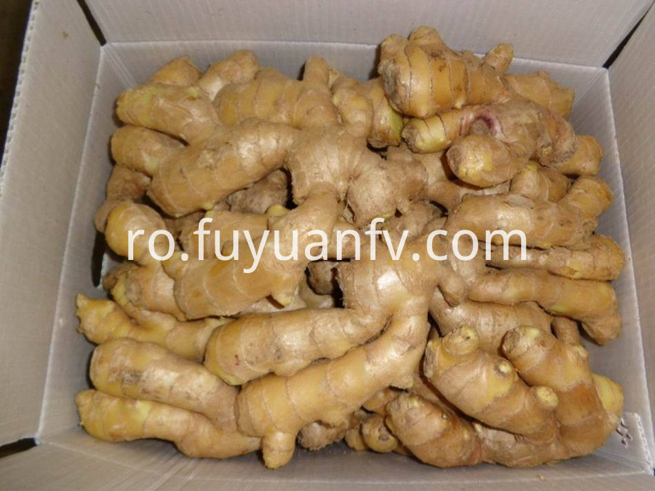 Air Dried Ginger25