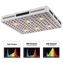 COB Led Grow Light for Greenhouse Hydroponics