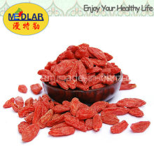 Native Goji Berry Lycium Chinense