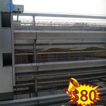 Trang trại chăn nuôi gia cầm tốt chất lượng 200-300 loài chim lồng cho gà