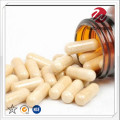 Capsule for Balance Intestinal Flora ans Absorption