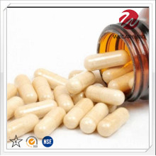 Probiotic Capsule for Food Supplement