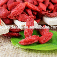 the certified organic goji berry high quality gansu