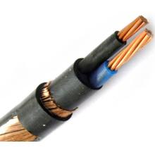 Câble d'alimentation concentrique de conducteur de cuivre