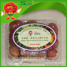 Red color fresh cherry tomato