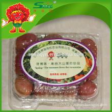 Red color fresh cherry tomato