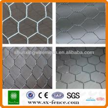 Hexagonal fio malha coelho gaiola galinha cerca (ISO9001: 2008 fabricante profissional)