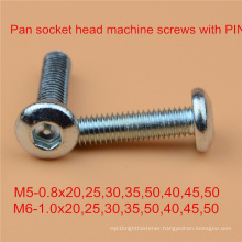 Pin Screw Safety Screw