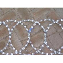 China Factory Hot Sale Galvanized Razor Wire (TS-L66)