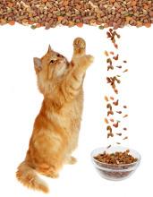 High Capacity Automatic Cat Food Machine