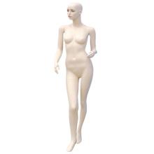Female genital model ,nude female body , hot adult female model