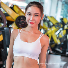 Wholesale cotton band push up adjustable dry quick women sport bra and yoga clothes