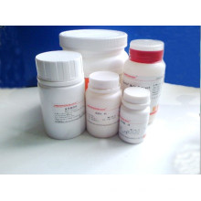 Good Quality 200mg Proglumide Tablets