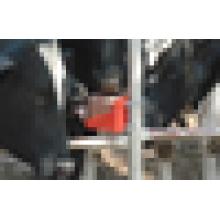 Machine de pressage hydraulique à brique à lècheurs d'animaux de haute qualité
