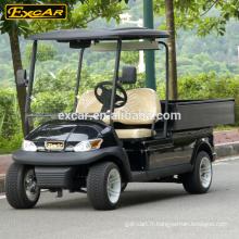 Trojan batterie 2 places chariot de golf électrique à vendre voiture mini-buggy de golf