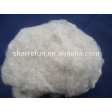 Dehaired And Carded Chinese Sheep Wool Med Shade 19.5mic/30-32mm