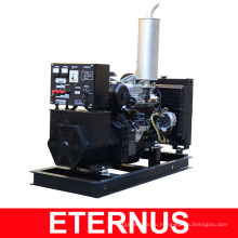 Большие дизель-генератор для продажи (BIS20D)