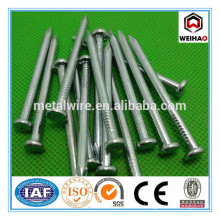 1'' to 6'' Electric Galvanized High Quality Concrete Steel Nails