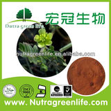 7.2USD/KG FOR Tribulus Terrestris Extract