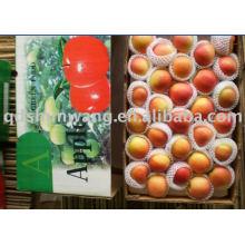 Top frischen Gala-Apfel