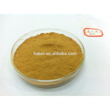 enzima alfa amilasa