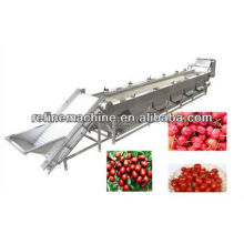 Round fruit or vegetable grading machine