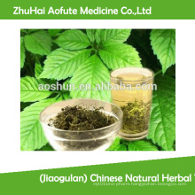 (Jiaogulan) Chinese Natural Herbal Tea Gynostemma