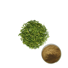 supplier high quality green tea extract powder
