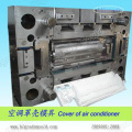 Plastic Injection Mould/ Injection Plastic Mold (C8)
