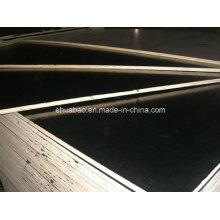 12mm Peuplier Core Black Film Faced Plywood