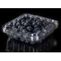 Blister clamshell printed PET blueberry blister packaging