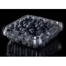 Blister Clamshell bedruckte PET Blueberry Blister Verpackung