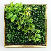Top venta bricolaje removible arte 3D pared de café planta con follaje