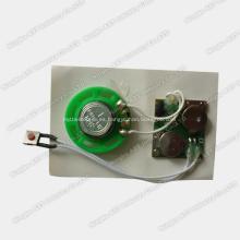 Chip musical, chip de música, chip de sonido, mini grabadora