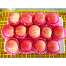 125 FUJI dulce rojo fresco Apple