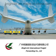 International Logistics Freight Forwarder Company Tracking and Delivery Express/Air Cargo Shipping From China to Worldwide/Global