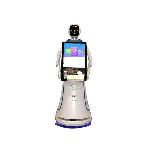 Shopping Mall and Supermarket Interactive Talking Robots