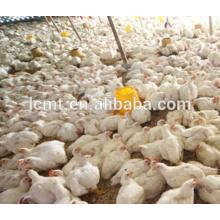 vollautomatische Hühnerausrüstung für Mini-Geflügelfarm