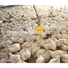 fully automatic chicken equipment for mini poultry farm