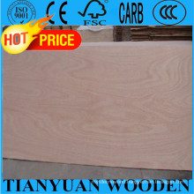 1220*2440mm 12mm Okoume/Bintangor/Oak/Teak/Birch Commercial Plywood